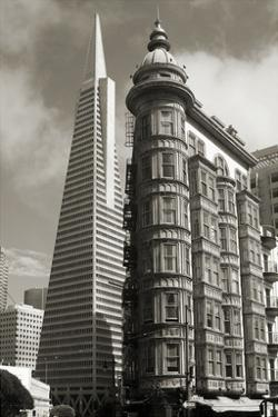 San Francisco Iconic Buildings by Christian Peacock