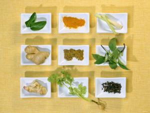 Asian Herbs and Spices by Christiane Krüger