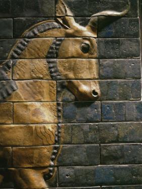 Babylonian Wall Tiles, Babylon, Iraq, Middle East by Christina Gascoigne