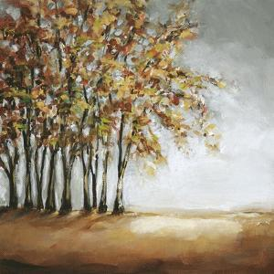 Tree in Fall by Christina Long