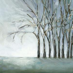 Tree in Winter by Christina Long