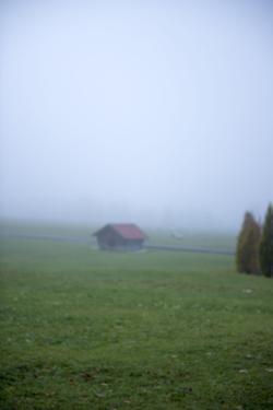 Germany, Bavaria, Elmau, meadow, barn, fog, by Christine Meder stage-art.de