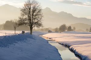 Winter walk in the Chiemgau region, Bergener Moos by Christine Meder stage-art.de