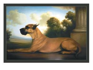 Recumbent Great Dane by Christine Merrill