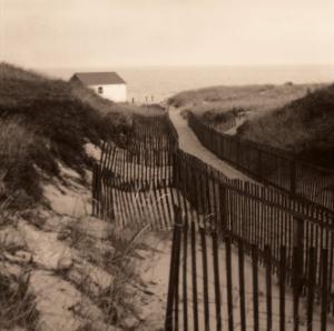 Dune Fence by Christine Triebert