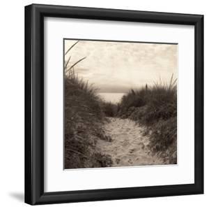 Dune Path by Christine Triebert