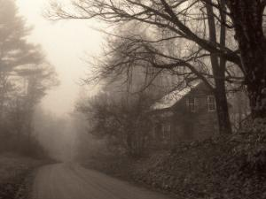 Parish Hill Road by Christine Triebert