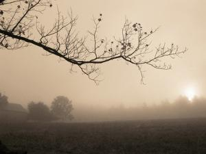 Parish Hill Sunrise by Christine Triebert