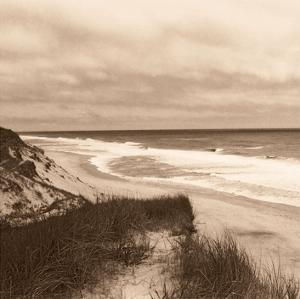 Wellfleet Dune by Christine Triebert