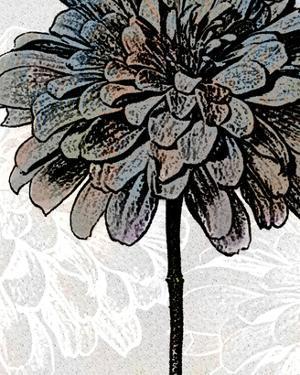 Ink Zinnia II by Christine Zalewski