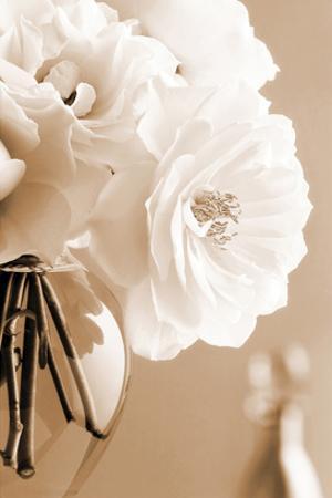 Roses in Sepia by Christine Zalewski