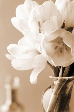 Tulips in Sepia by Christine Zalewski