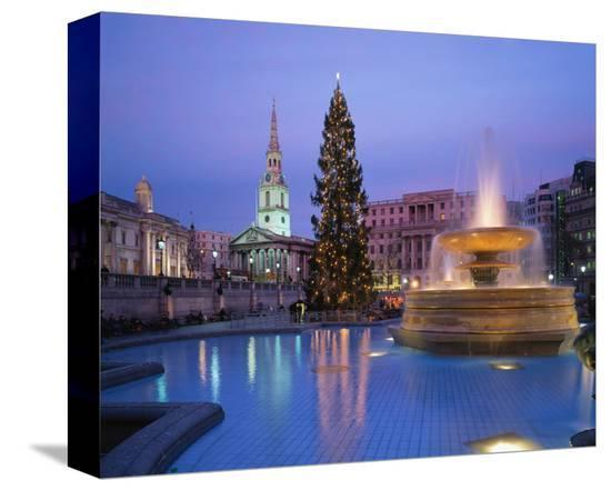Christmas tree at Trafalgar Square, London, England, United Kingdom of Great Britain--Stretched Canvas Print