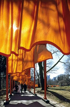 The Gates, no. 51 by Christo