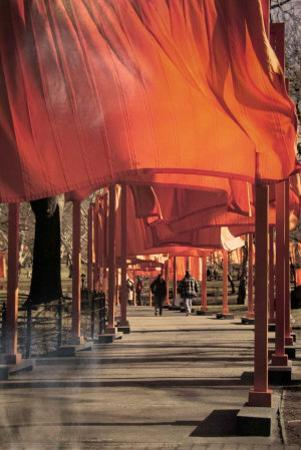 The Gates, Photo No. 26 by Christo