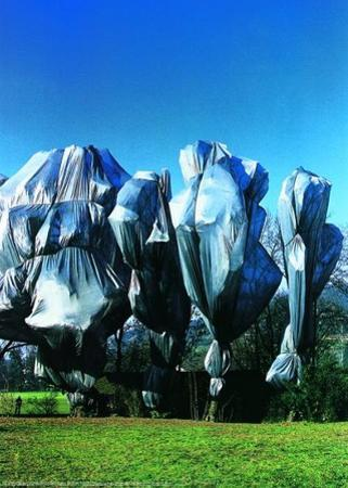Wrapped Trees Nr. 12 (Riehen) by Christo