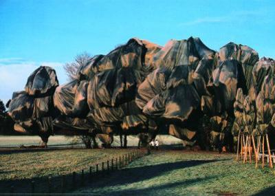 Wrapped Trees XIII by Christo