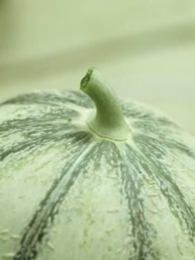 A Charentais Melon by Christophe Madamour