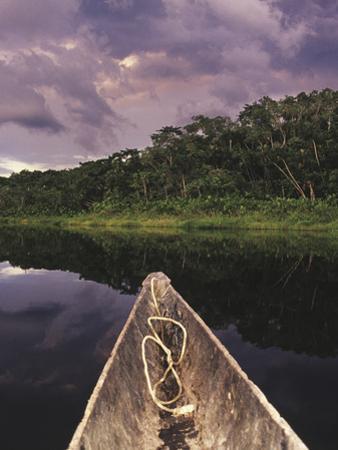 Napo Wildlife Center, Yasuni National Park, Amazon Basin, Ecuador by Christopher Bettencourt