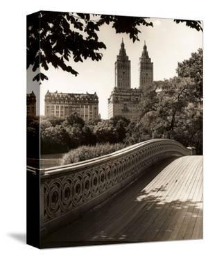 Central Park Bridges I by Christopher Bliss