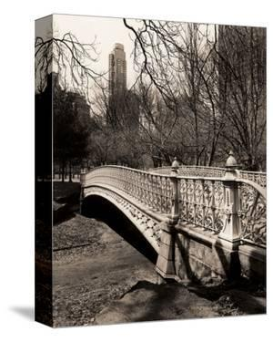 Central Park Bridges II by Christopher Bliss