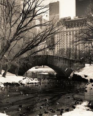 Central Park Bridges IV by Christopher Bliss