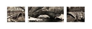 Central Park Bridges by Christopher Bliss