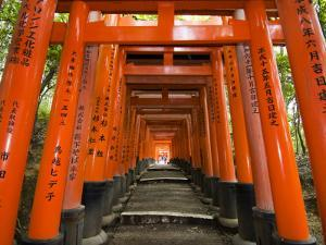 Traditional Torii with Inscriptions at Fushimi Inari Shrine by Christopher Groenhout