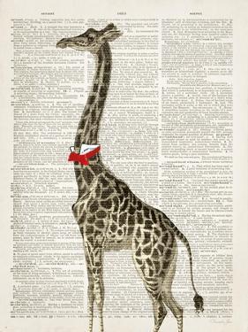 Dapper Giraffe by Christopher James