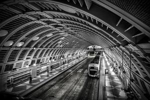 Pioneer Square Station, Seattle, Washington, USA by Christopher Reed