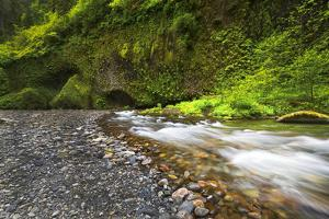 USA, Oregon, Hood River County. Eagle Creek just below Punchbowl Falls. by Christopher Reed