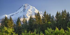 USA, Oregon, Hood River County. The sun sets on Mount Hood. by Christopher Reed