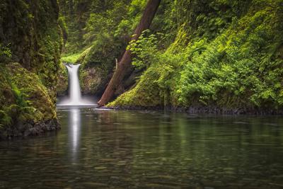 USA, Oregon, Hood River. Punch Bowl Falls along Eagle Creek in the Columbia River Gorge.