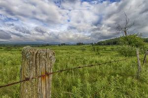 USA, West Virginia. A high mountain meadow in the Canaan Valley. by Christopher Reed