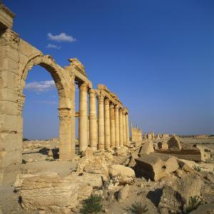 Classical Columns, Palmyra, Syria by Christopher Rennie