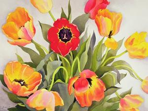 Orange and Red Tulips by Christopher Ryland