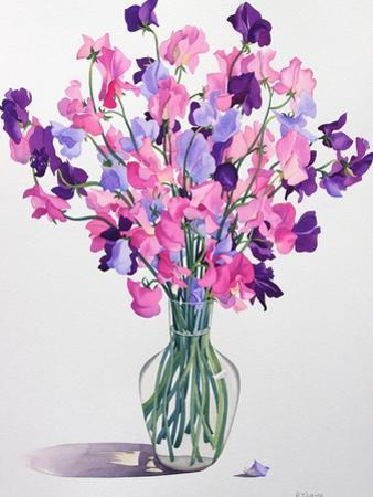 Sweetpeas, 2007 by Christopher Ryland