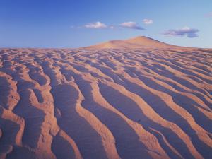 California, Dumont Dunes in the Mojave Desert at Sunset by Christopher Talbot Frank