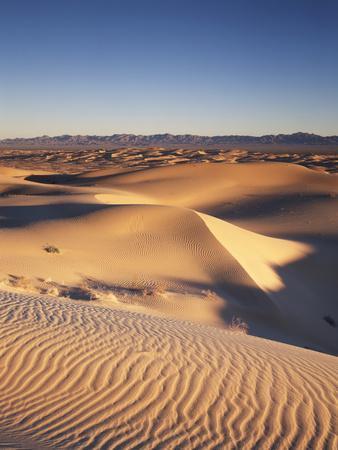 California, Imperial Sand Dunes, Glamis Sand Dunes