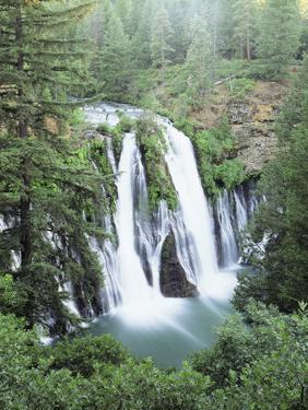 California, Mcarthur Burney Falls Memorial State Park, Burney Falls by Christopher Talbot Frank