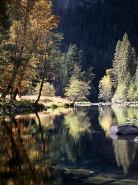 California, Sierra Nevada, Yosemite National Park, Fall Along the Merced River by Christopher Talbot Frank
