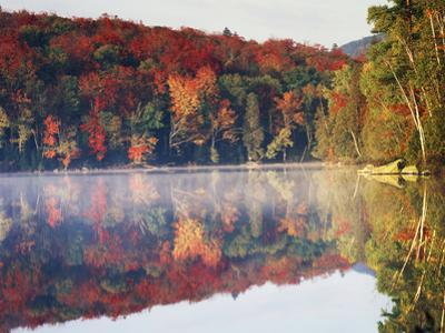 New York, Adirondack Mts, Sugar Maples and Fog at Heart Lake in Autumn