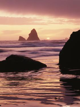 Oregon, Sunset over Sea Stacks at Meyers Creek Beach by Christopher Talbot Frank