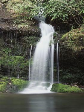 Tennessee, Great Smoky Mts National Park, Waterfall on Little River by Christopher Talbot Frank