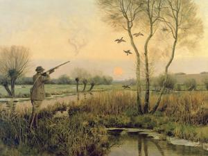 Duck Shooting by Christopher William Strange