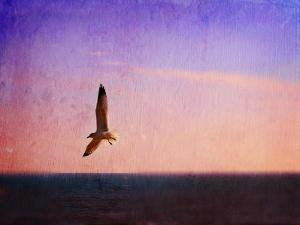 Let Your Spirit Soar by Christy Ann