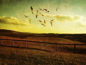 Opportunity Fleeting 2 by Christy Ann