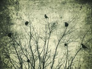 Spoken of the Soul by Christy Ann