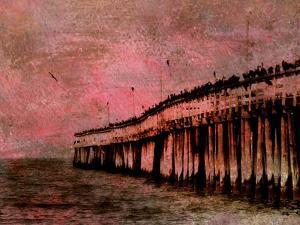 Wayward by Christy Ann