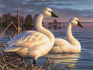 Evening Tundras by Chuck Black